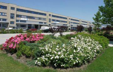 Walter Business Park – Büro-und Lagerflächen im Süden von Wien, 2355 Wiener Neudorf, Bürofläche